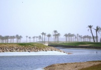 Sinai Golf Heights